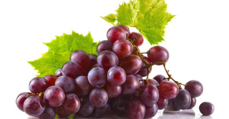 Red-Grapes-800x416